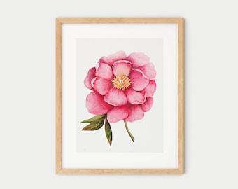 Peony blossom | Watercolor print poster | Elegant wall art | Botanical floral illustration