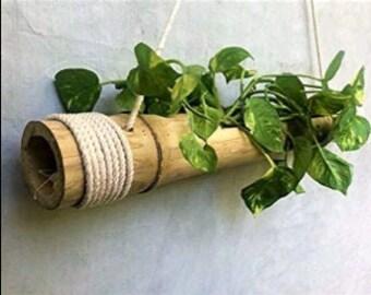 Bamboo Planter Pots Etsy