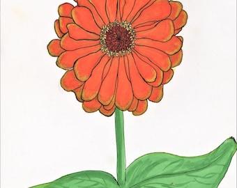 Orange Zinnia, Brush Marker and Pen Drawing - Digital Download