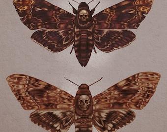 "Mini Prints 5.5 x 8.5"" - Luna and Skull Moths"