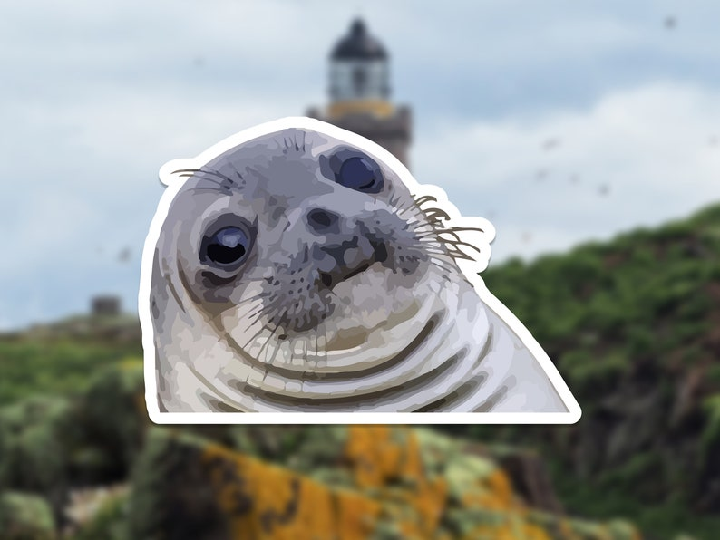 Awkward Moment Seal Vinyl Sticker Laptop Decals Meme | Etsy