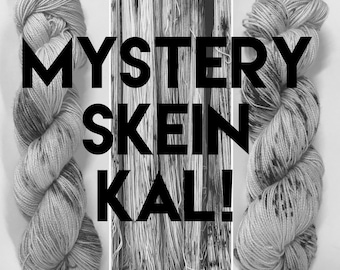 Mystery Skein Hand Dyed Yarn: DK or Sock Weight