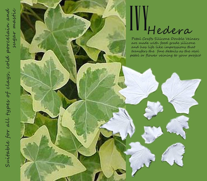 flower fondant,beanspaste,mastic,clay flower Ivy Leaf realistic double veiner cutter flower leaf fruit 3d clear silicone for sugarcraft
