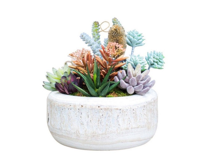 Faux Succulents in a White Wooden Bowl
