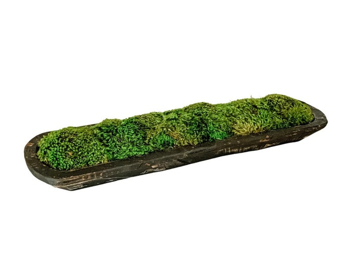Decorative Preserved Moss in a Dark Gray Hand Carved Spanish Oak Wooden Dough Bowl
