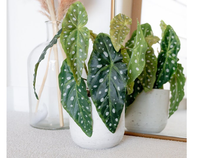 Faux Potted Begonia Plant