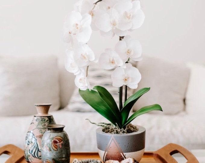 Faux Phalaenopsis Orchid Arrangement