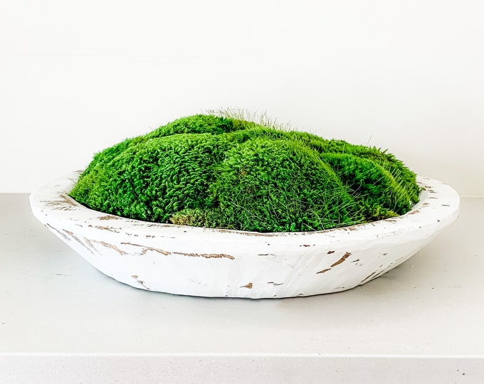 Decorative Preserved Moss in a Hand Carved Spanish Oak Wooden Bowl