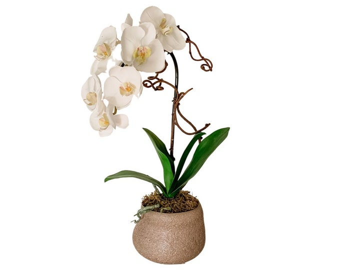 Potted Faux Phalaenopsis Orchid