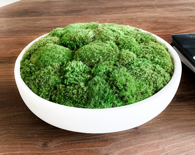 Decorative Preserved Moss Bowl
