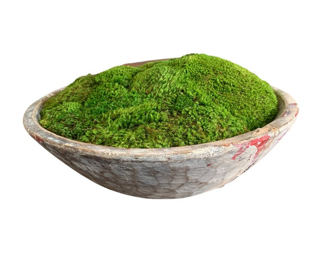 Decorative Preserved Moss in an Artisan Weathered Rustic Bowl