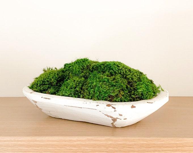 Preserved Moss in a Mini Rustic White Dough Bowl