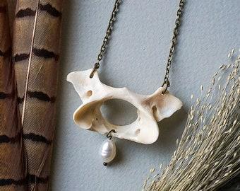 Otter vertebra necklace wiht real pearl