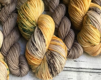 PSL Pumpkin Spice Latte sock set yarn  sock fingering Hand dyed yarn Gypsysoulfibers