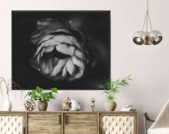 Black and white Ranunculus close-up - Macro art, Modern Minimalist, Printable Wall Art, Digital Download, Nature Photography, Abstract Print