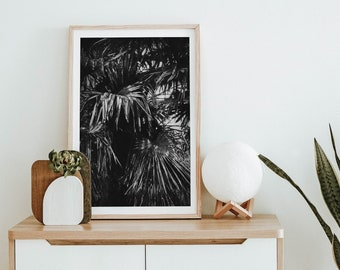 Palm leaves, tropical holiday vibe - Botanical, Modern Minimalist, Printable Wall Art, Digital Download, Nature Photography, Abstract Print