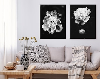 Set of 2 pretty peony flowers, rain drops - Macro art, Modern Minimalist, Printable Wall Art, Digital Download, Nature Photography