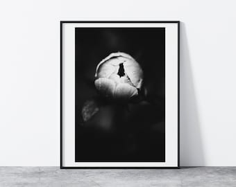 Black and white Peony bud - Macro art, Modern Minimalist, Printable Wall Art, Digital Download, Nature Photography, Abstract Print