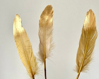 Golden Feathers Spring Easter