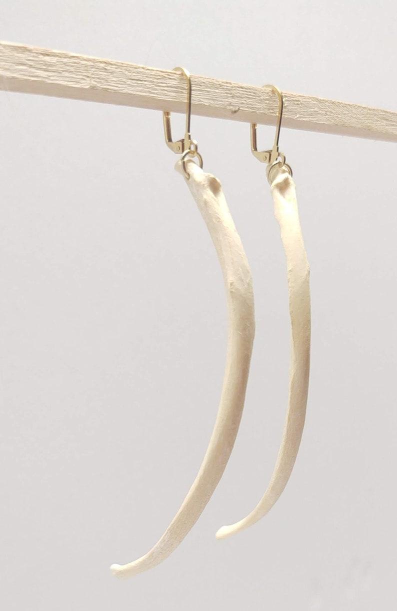 Coyote Rib Bone Earrings