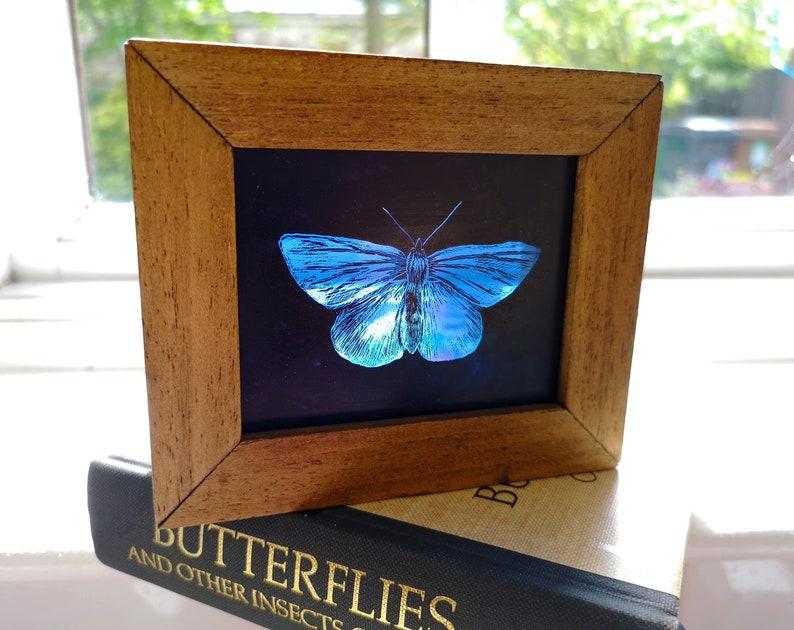 Hand-Painted Glass Suncatcher Block  Blue Butterfly image 0