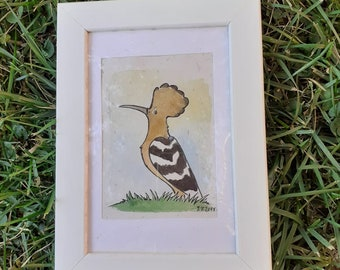 Hoopoe small picture