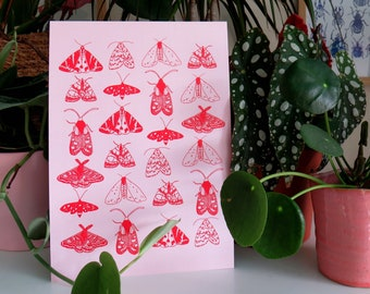 A5 print of pink and red moth digital illustration on recycled card / pink moth print / moth and butterfly drawing / gifts for her