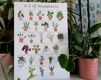 A-Z of Houseplants A4 print / poster / wall art / indoor plants / recycled card / home decor