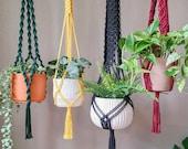 Plant Hangers in bold colors - Macrame Plant Hanger