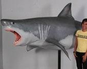 Great White Shark 12ft