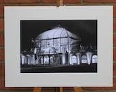 Palmengarten  - Original Mounted Darkroom Print