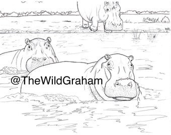 Hippo Coloring Page Etsy
