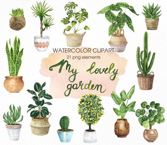 House Plants Watercolor Clipart Indoor Plants Clipart Plants   Etsy    Watercolor plants, Plants, Watercolor clipart