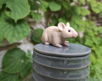 grey can with rat