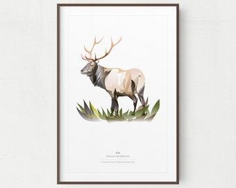 Elk Wall Art Print, Minimalist American Elk Print, Olympic National Park, Printable Art, Printable Elk, Instant Download, Yellowstone Animal