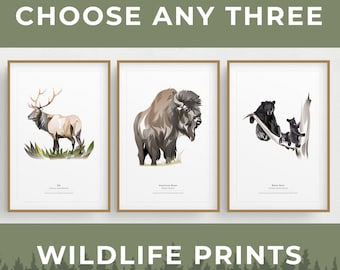 Set of Any 3 Wildlife Prints, Minimalist Modern Print, Bison, Brown Bear, Black Bear, Coyote, Wolf, Elk, Whale, and MORE