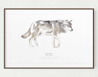 Wolf Wall Art Print, Minimalist Gray Wolf Print, Printable Art, Printable Wolf, Instant Download, Yellowstone, Wolf Gift, Gray Wolf Print