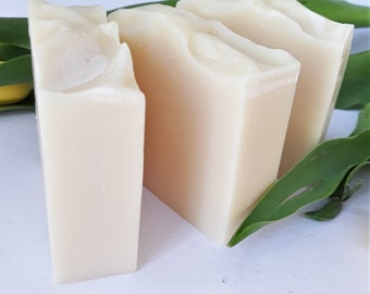 Outdoors Soap Bar, Camping, Survival, Gardening soap, Insect repellant soap, Mosquito repellant soap, vegan, chemical, fragrance-palm free