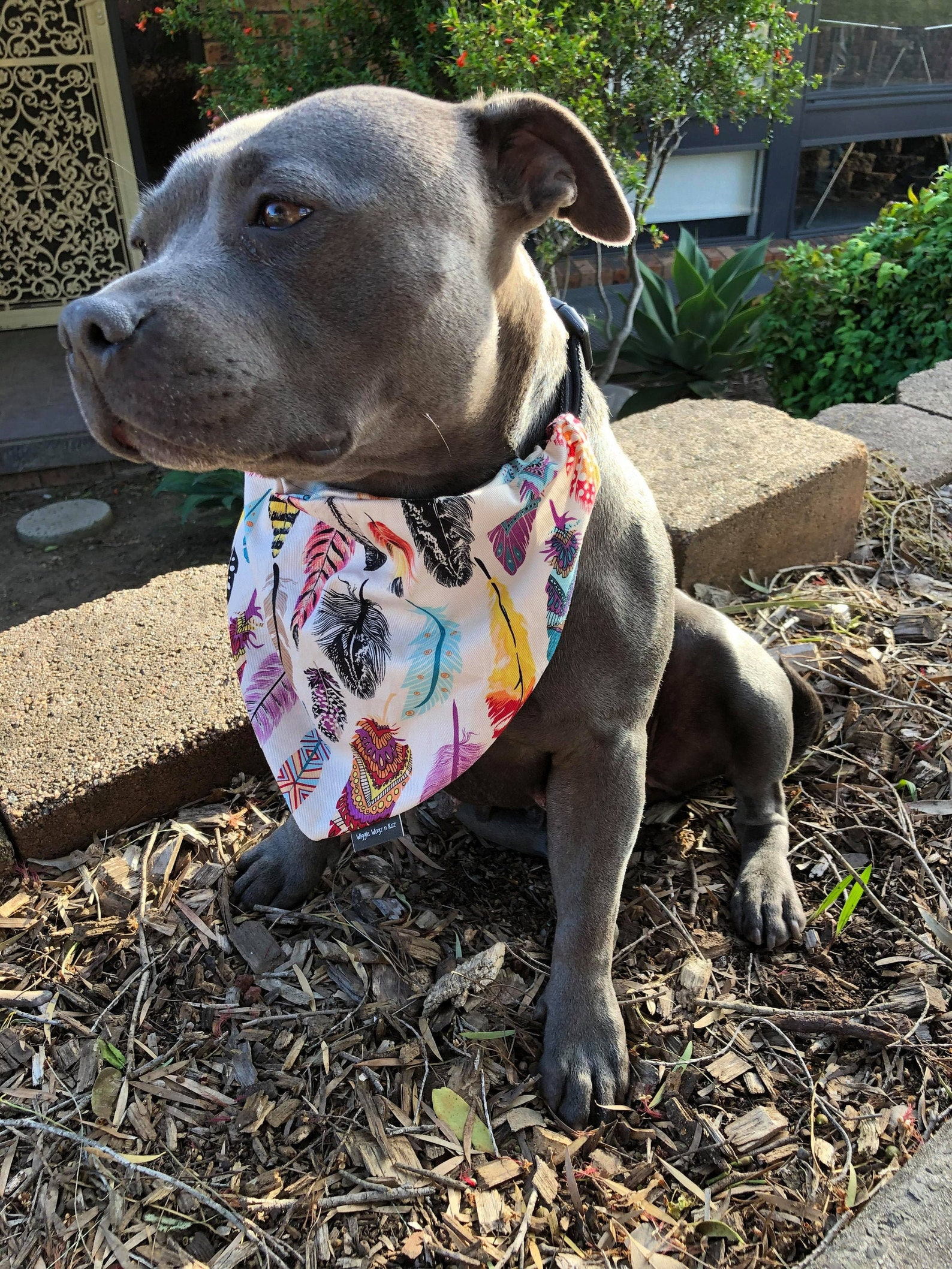 Dog bandana with feather print