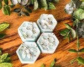 Wild Mint Eucalyptus Botanical Soy Wax Melts 100 Vegan Cruelty Free