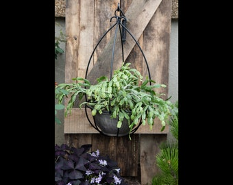 Wrought Iron Hanging Wire Basket Plant Hanger