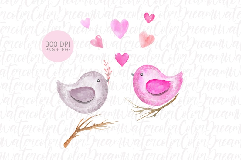 Love Birds Sublimation Printing PNG Digital download. Valentine/'s Day cartoon character Springtime bird couple watercolor clipart