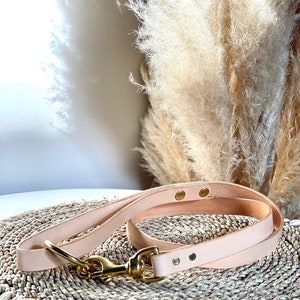 Natural Tan Leather dog lead with solid brass hardware and O-Ring Beige Leather dog Leash.