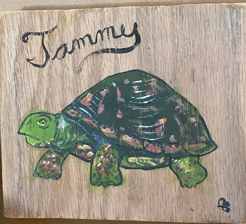Tammy the Turtle image 0