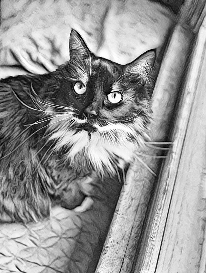 Pittura Style  Pet Portrait from Photo Custom Pet Portrait Digital Pet Portrait Personalized Gift Pet Memorial Photo to Art
