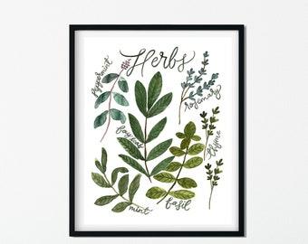 Herbs - Herbs Art Print - Kitchen Art - Home Decor - Watercolor Painting