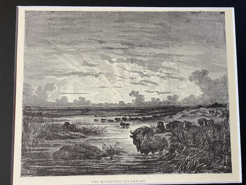 etching book plate The Mississippi savannahs by Gustave Dore