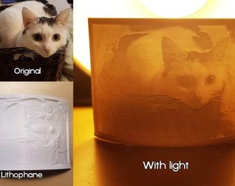 Lithophane / 3D picture