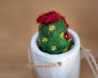 Cactus needle-felted with small flowers, in ceramic pots for hanging