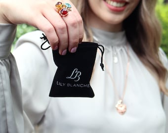 Anti-tarnish bag for jewellery by Lily Blanche Jewellery Velvet Jewellery Pouch Jewellery Storage Bag